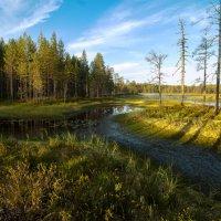 Глухое озеро :: Павел Дунюшкин