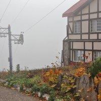 Осенний туман :: Nina Karyuk