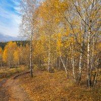 Под небом октября... :: Владимир Жданов