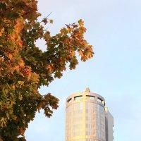 Осень озарила город :: Михаил Лесин