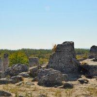 вбитые камни :: Oksana