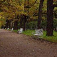 В парке,,, :: Ирина Елагина