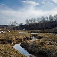 Ранняя весна :: Владимир Макаров