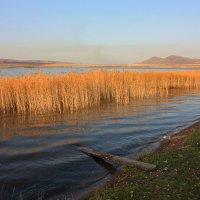 Осенний пейзаж на воде. :: Наталья Юрова