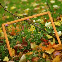 ....осень  рисует..... :: Ольга Стёпочкина