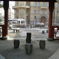 взгляд :: Николай Васильев