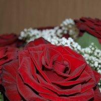 Королева цветов :: Алексей Харин