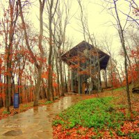 Thorncrown Chapel In Eureka Springs (Arkansas, USA) :: Arman S