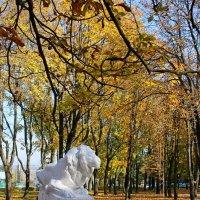 Осень в старом парке.. :: Александр Герасенков
