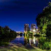 Ночь в парке :: Николай Цыпак