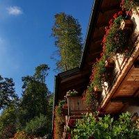 Балкон :: Вальтер Дюк