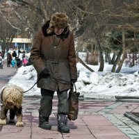 Старый пёс :: Nn semonov_nn