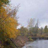 Осень :: Ирина Артемова