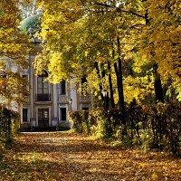 Золотая осень в Кусково :: Надежда Лаптева