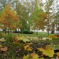 осень :: Надя Попова