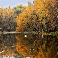 Осенний день на Маленковском пруду :: Olenka