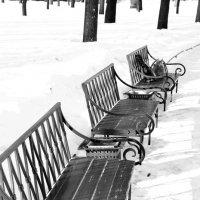 В парке :: Juls T.