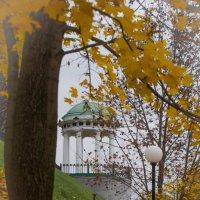 осень :: Михаил Кузнецов