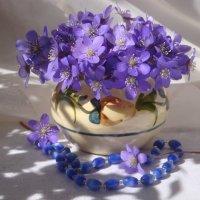 Весенний букетик :: Mariya laimite