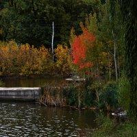 Осень. Проба пера. :: Александр Бодягин