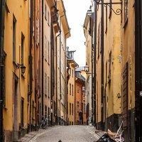 Стокгольм - город контрастов :: Александр Творогов