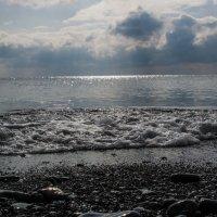 Море :: Павел Данилевский