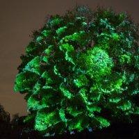 3d дерево :: данил k