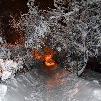 Зимняя вечерняя аллея :: Борис Русаков