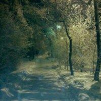 тропа в зиму :: Александр Таннагашев