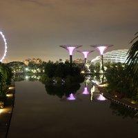 Екатерина Кебал - В банановолимонном Сингапуре :: Фотоконкурс Epson