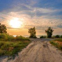 Дорога к солнцу :: Оксана Парубина