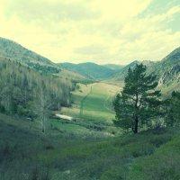 горы. :: Наталия Чакирбаева
