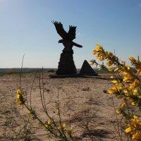 Степной орел :: Светлана Ропина