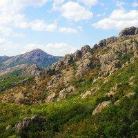 Стара планина_природен парк Сините камъни :: Сергей Калиновский