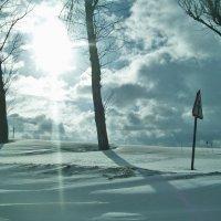 Зима :: Светлана З