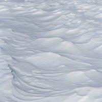 Снег :: Ирина Яздан Мехр