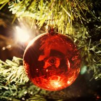 Новогоднее настроение :: Константин Куликов