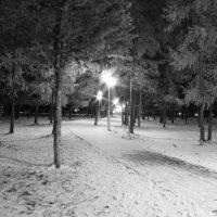 Парк :: евгений Смоленцев