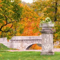 Осень в парке :: Анастасия Белякова