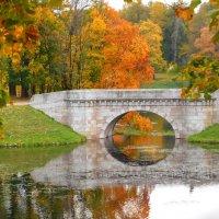 Карпин мост осенью :: Анастасия Белякова