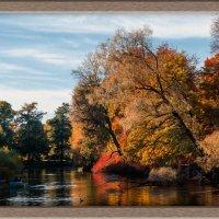 Осень в ЦПКиО :: Алексей Шехин
