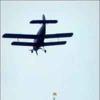 Работает вытяжной парашют. :: Игорь