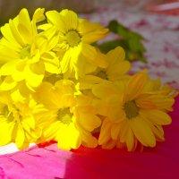 Цветочки :: Katerina Taran