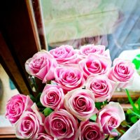 Розы :: Katerina Taran