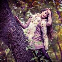 Forest :: михаил шестаков