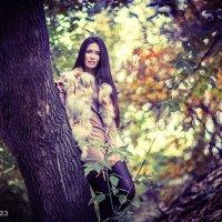 Forest2 :: михаил шестаков