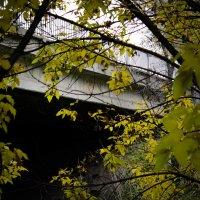Мост через вонючку :: Александр Секретарев