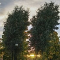 Пара на закате :: Valerii Ivanov