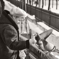 Любовь и голуби...) :: Juls T.
