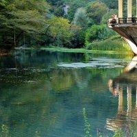 Абхазия Новый Афон :: Виолетта